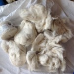 Partially felted cat fur